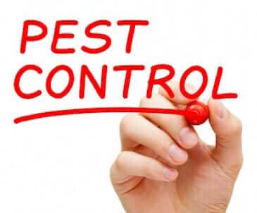 pest control services alpharetta